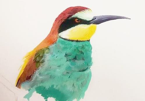 Bee-eater (WIP in gouache)