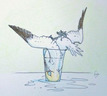 Gannet in a Glass